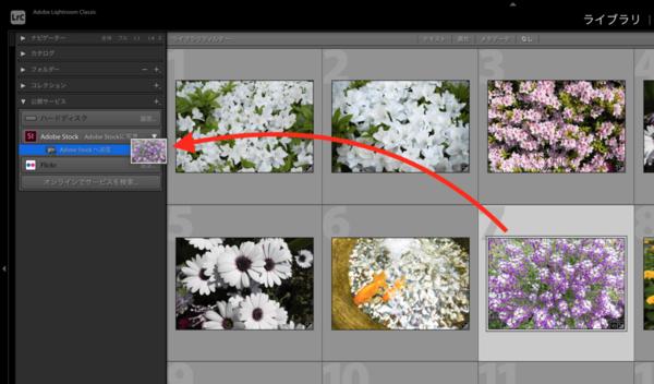 Adobe Lightroom ClassicからAdobe Stockへ写真を送信するための設定