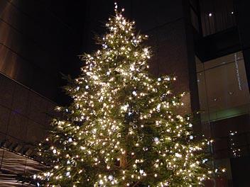 クリスマスツリー@MIKIMOTO